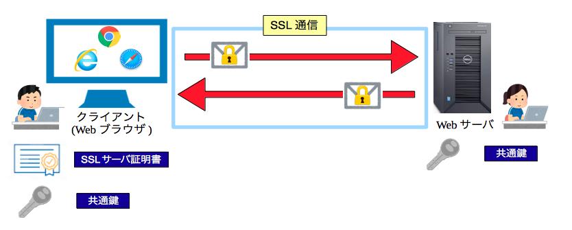 SSL通信の確立