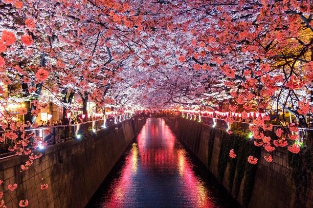 日本経済・財政・金融・景気の主な指標
